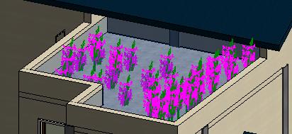 楼顶小水池.png